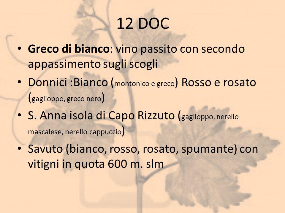 12 DOC Greco di bianco: vino passito con secondo appassimento sugli scogli Donnici :Bianco ( montonico e greco ) Rosso e rosato ( gaglioppo, greco ner