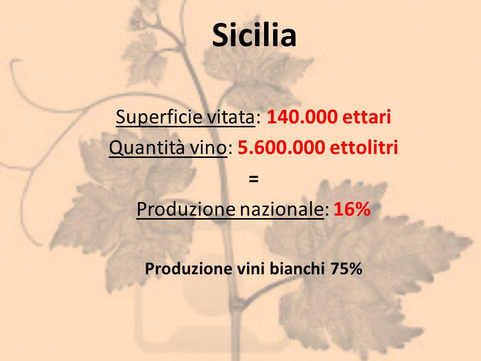 Sicilia Superficie vitata: 140.000 ettari Quantità vino: 5.600.000 ettolitri = Produzione nazionale: 16% Produzione vini bianchi 75%