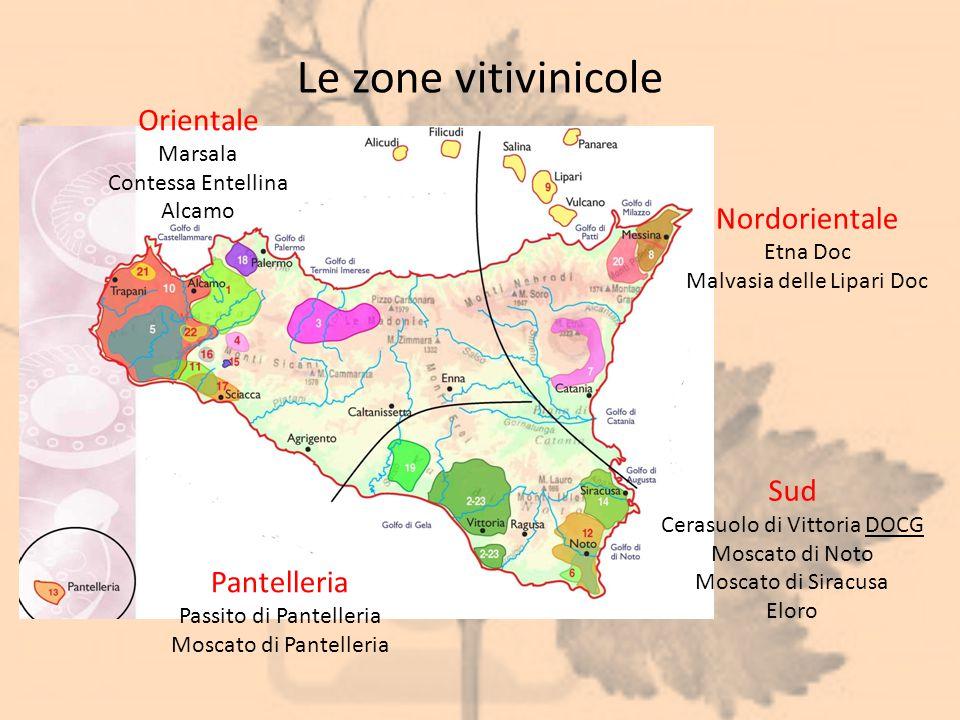 Le zone vitivinicole Nordorientale Etna Doc Malvasia delle Lipari Doc Sud Cerasuolo di Vittoria DOCG Moscato di Noto Moscato di Siracusa Eloro Pantell