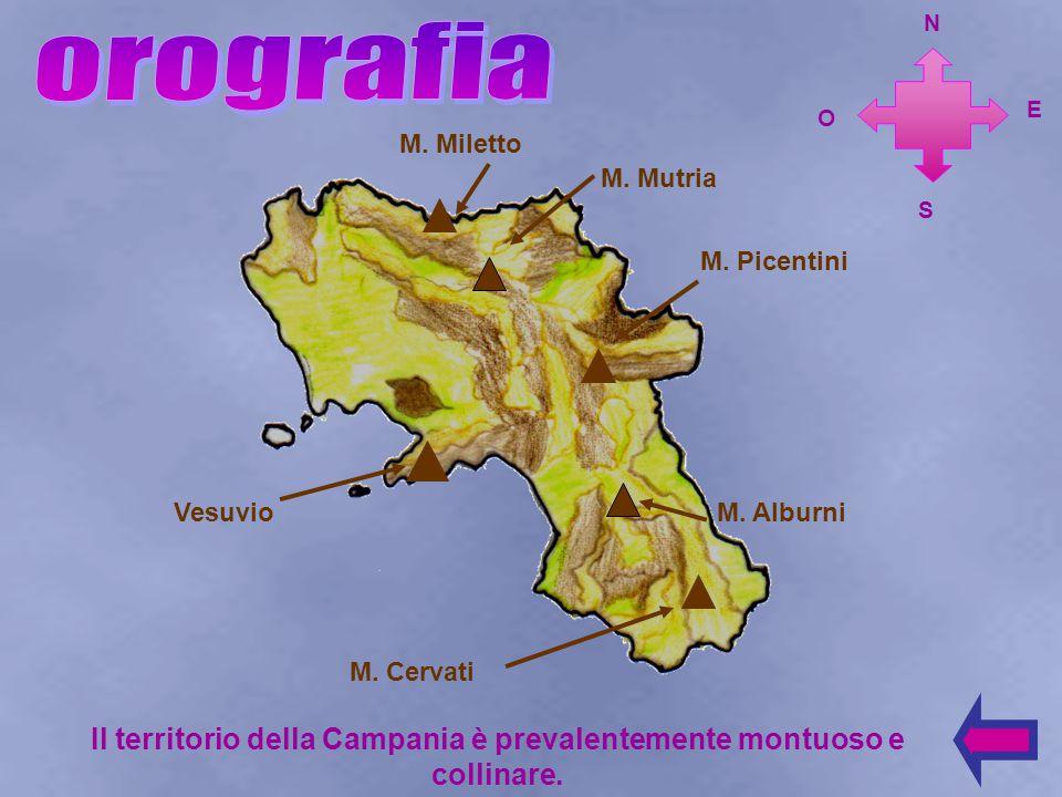 Molise Lazio Puglia Basilicata S E N O MAR TIRRENO