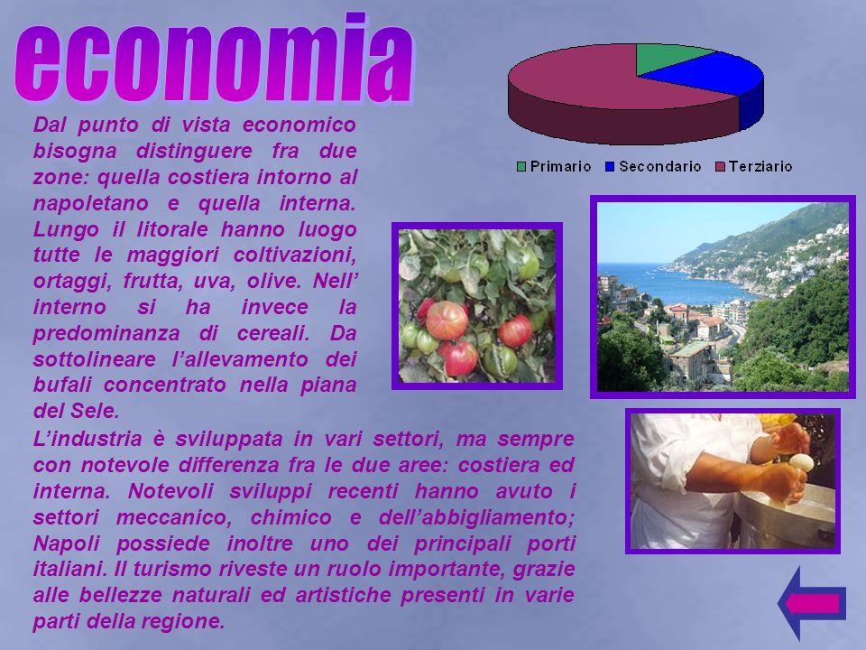 Dal punto di vista economico bisogna distinguere fra due zone: quella costiera intorno al napoletano e quella interna.