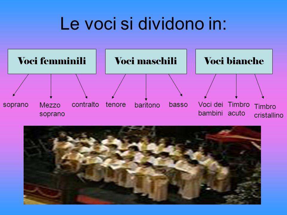 Le voci si dividono in: Voci femminili Voci maschiliVoci bianche soprano Mezzo soprano contraltotenore baritono bassoVoci dei bambini Timbro acuto Tim