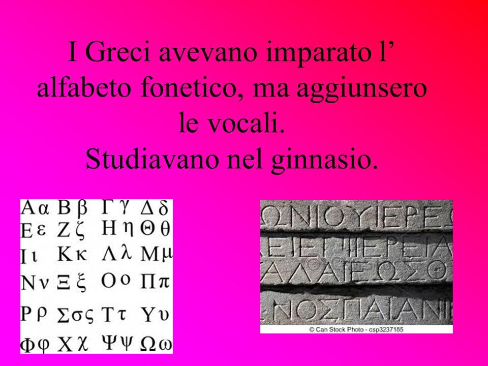 I Greci avevano imparato l' alfabeto fonetico, ma aggiunsero le vocali. Studiavano nel ginnasio.