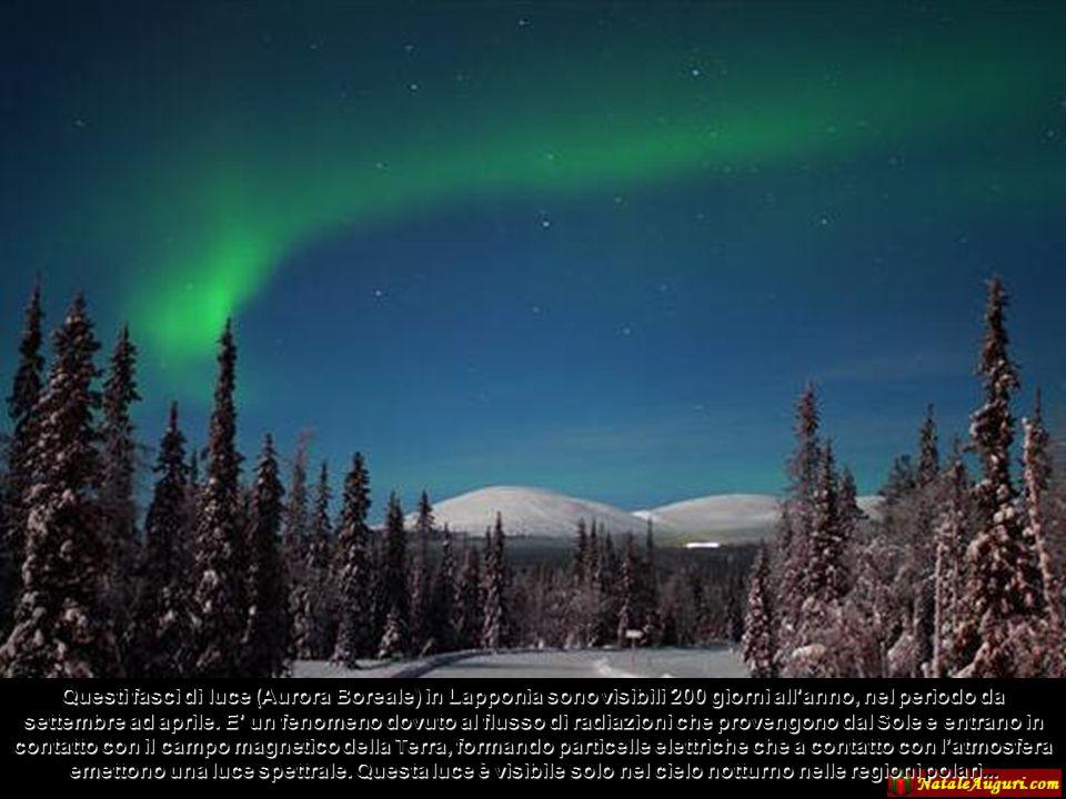 Questi fasci di luce (Aurora Boreale) in Lapponia sono visibili 200 giorni all anno, nel periodo da settembre ad aprile.