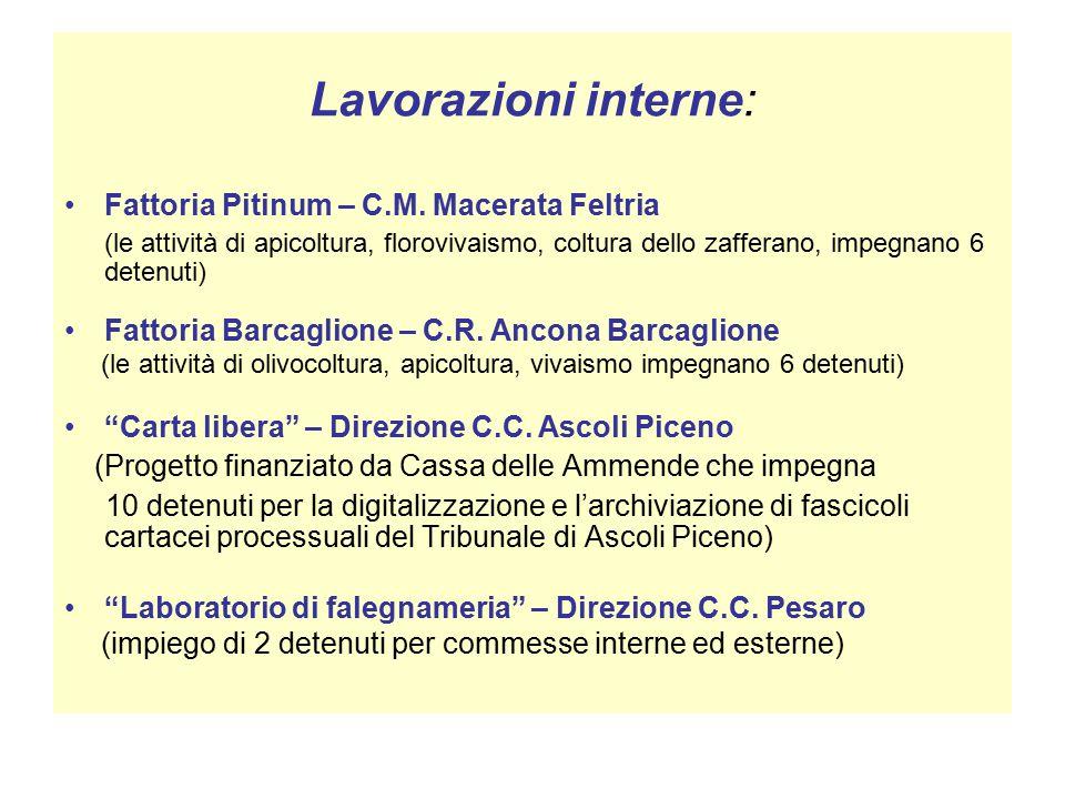 Lavorazioni interne: Fattoria Pitinum – C.M.