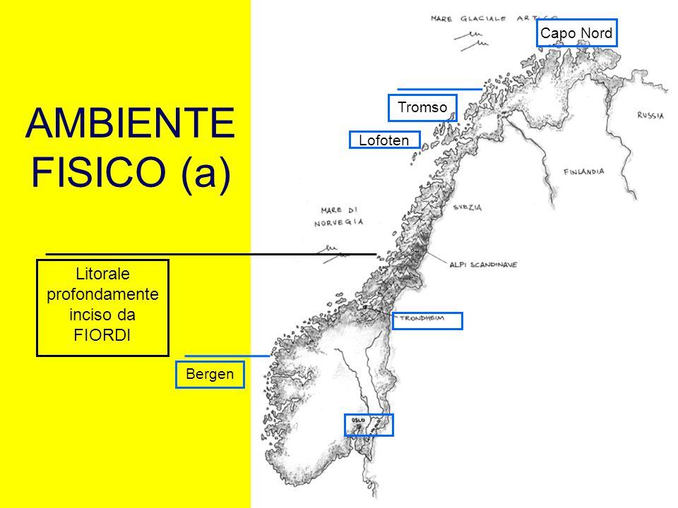 AMBIENTE FISICO (a) Bergen Capo Nord Lofoten Litorale profondamente inciso da FIORDI Tromso