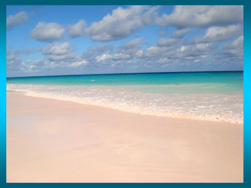 Spiaggia di sabbia bianca in Australia (Hyams Beach)