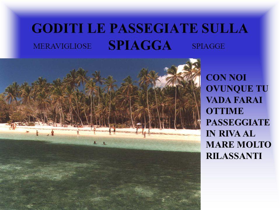 GODITI LE PASSEGIATE SULLA SPIAGGA CON NOI OVUNQUE TU VADA FARAI OTTIME PASSEGGIATE IN RIVA AL MARE MOLTO RILASSANTI MERAVIGLIOSESPIAGGE