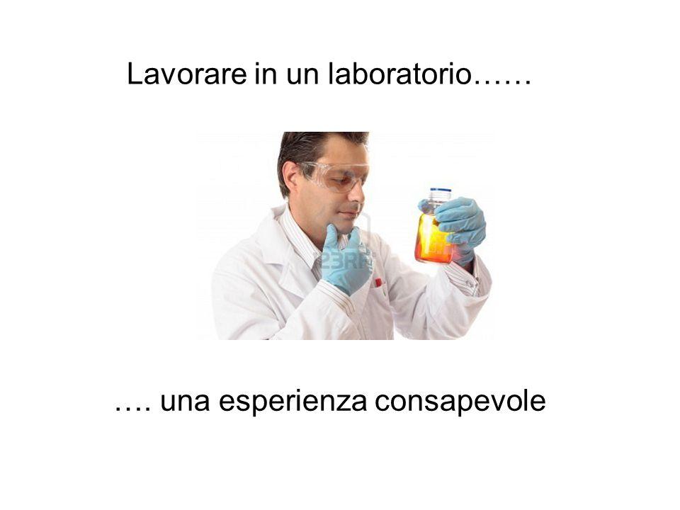 Lavorare in un laboratorio…… …. una esperienza consapevole