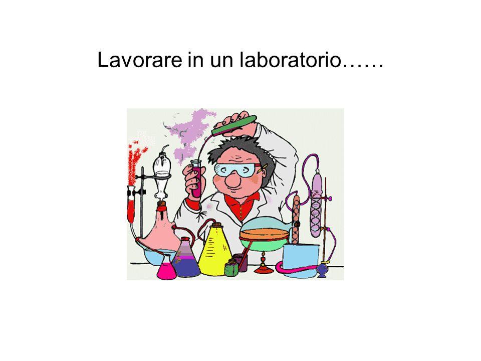 Lavorare in un laboratorio……