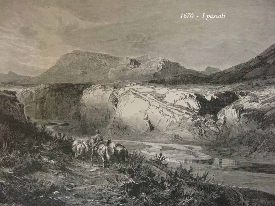 1670 - I pascoli