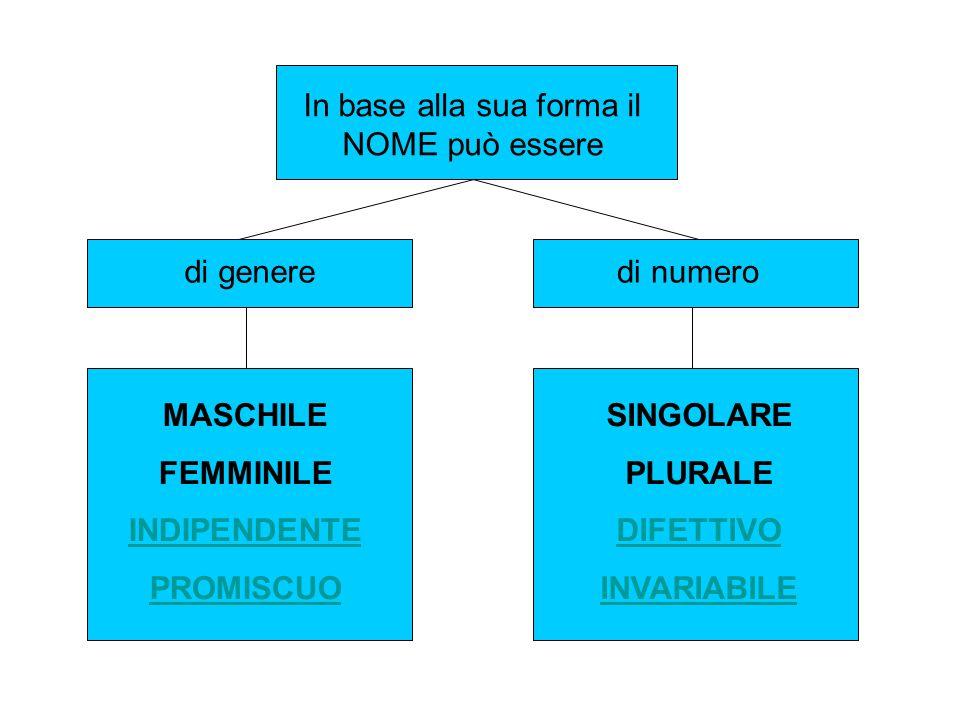 In base alla sua forma il NOME può essere di generedi numero MASCHILE FEMMINILE INDIPENDENTE PROMISCUO SINGOLARE PLURALE DIFETTIVO INVARIABILE