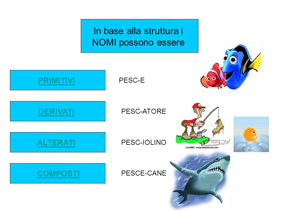 In base alla struttura i NOMI possono essere PRIMITIVI DERIVATI ALTERATI COMPOSTI PESC-E PESC-ATORE PESC-IOLINO PESCE-CANE