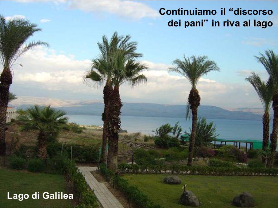 Continuiamo il discorso dei pani in riva al lago Lago di Galilea