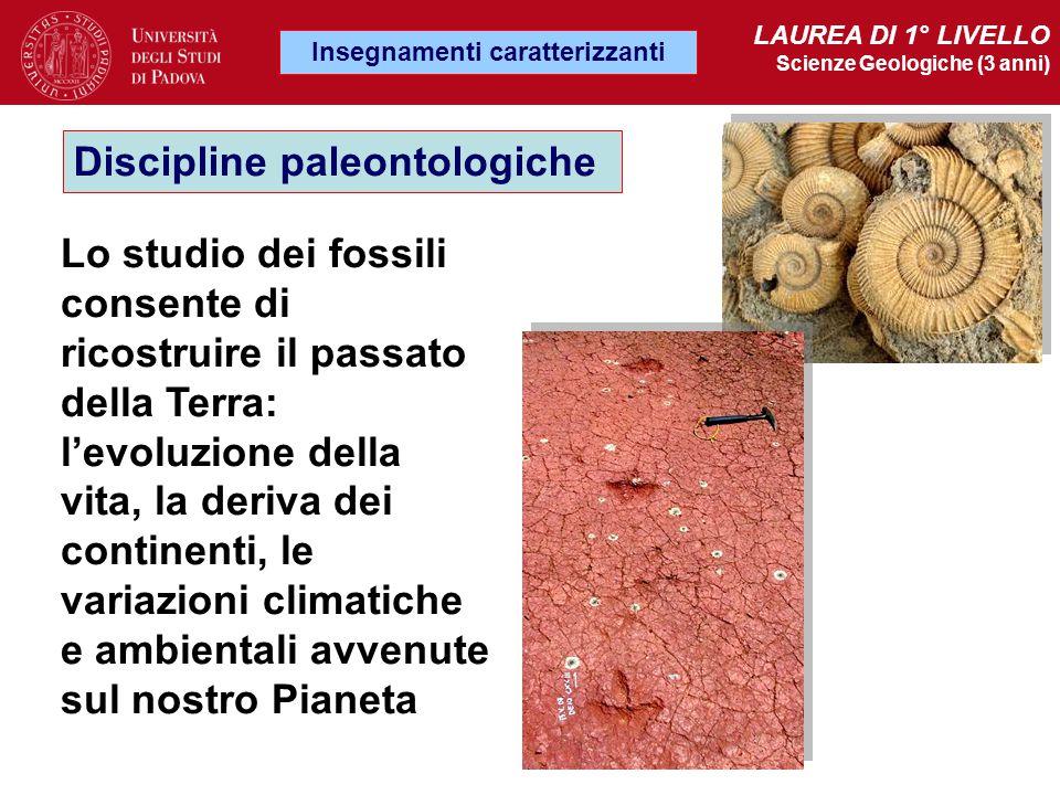 Lo studio dei fossili consente di ricostruire il passato della Terra: l'evoluzione della vita, la deriva dei continenti, le variazioni climatiche e am