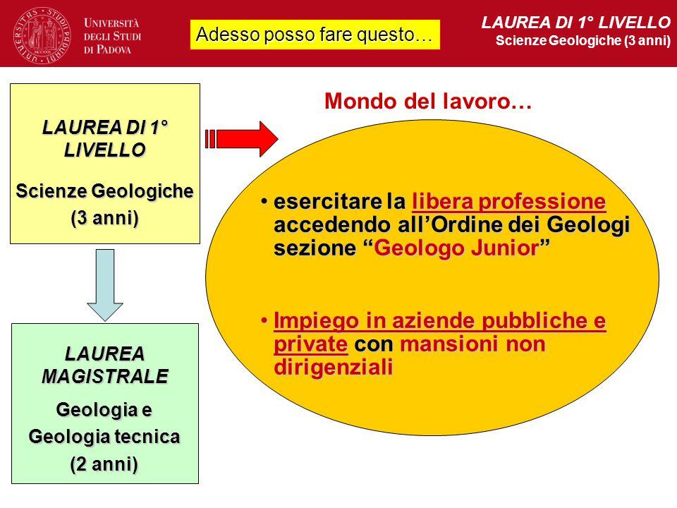 Adesso posso fare questo… LAUREA DI 1° LIVELLO Scienze Geologiche (3 anni) Mondo del lavoro… Scienze Geologiche (3 anni) LAUREA DI 1° LIVELLO Geologia