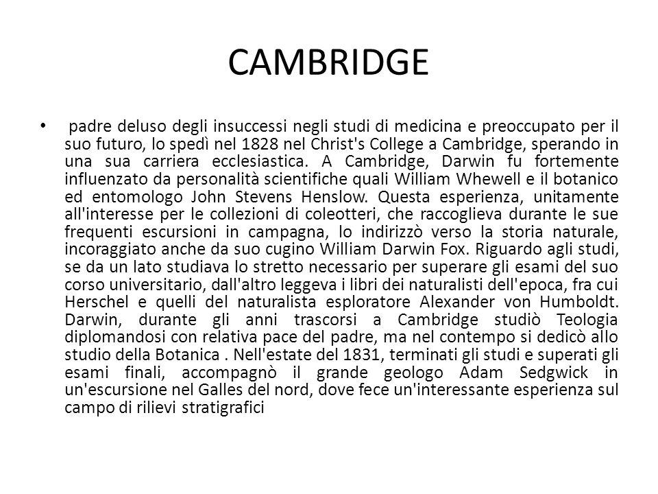 CAMBRIDGE padre deluso degli insuccessi negli studi di medicina e preoccupato per il suo futuro, lo spedì nel 1828 nel Christ's College a Cambridge, s