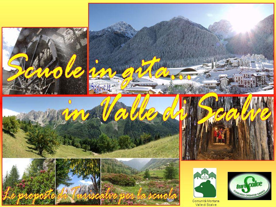 Parte del Parco Regionale delle Orobie da oltre 20 anni, la Valle è composta da 4 comuni con circa 4.500 abitanti complessivi: AZZONE (m 970 slm), affascinante borgo di montagna nel cuore dei Boschi del Giovetto , riserva naturale di grande interesse scientifico per la preziosa presenza della formica Rufa; COLERE (m 1.000 slm), famosa per il lungo inverno e per i suoi 25 km di piste sempre innevate poste ad un altitudine di 2.200 metri; SCHILPARIO (m 1.135 slm), rinomata località per lo sci nordico, il museo etnografico e l'antica miniera da rivivere ripercorrendo l'originale ferrovia a bordo di vagonetti di un caratteristico trenino; VILMINORE (m 1.018 slm), con l'antico Palazzo Pretorio, il nuovissimo percorso naturalistico-didattico dell'Arboreto Gleno Alpino e i ruderi di una fra le più imponenti dighe della zona, crollata per cedimento nel 1923 distruggendo gli abitati sottostanti.