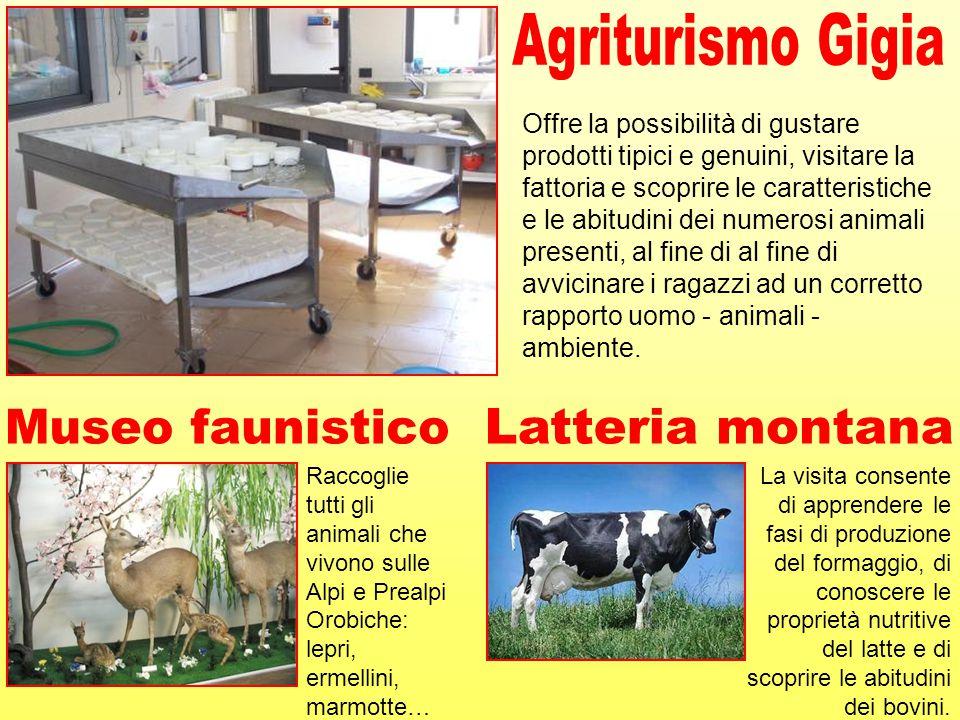 Offre la possibilità di gustare prodotti tipici e genuini, visitare la fattoria e scoprire le caratteristiche e le abitudini dei numerosi animali pres