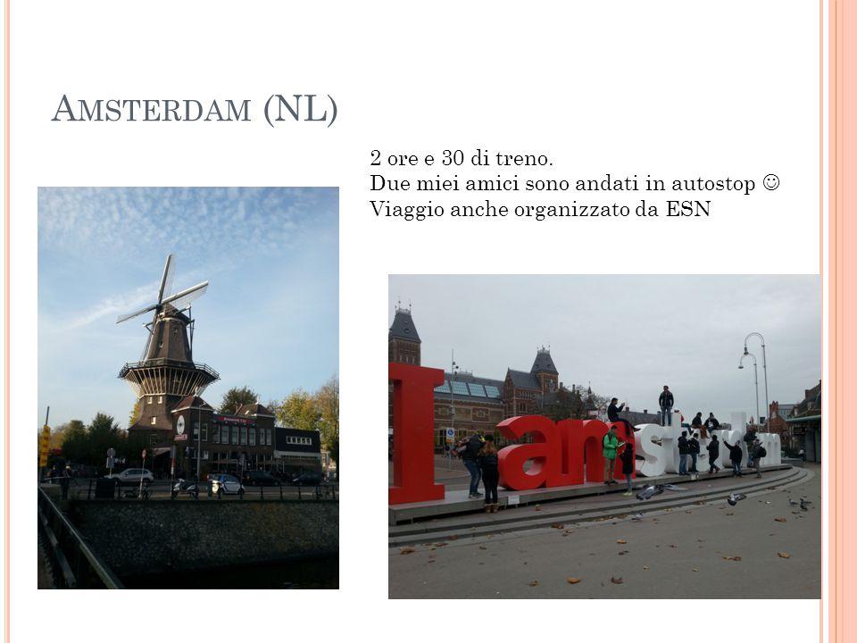A MSTERDAM (NL) 2 ore e 30 di treno. Due miei amici sono andati in autostop Viaggio anche organizzato da ESN