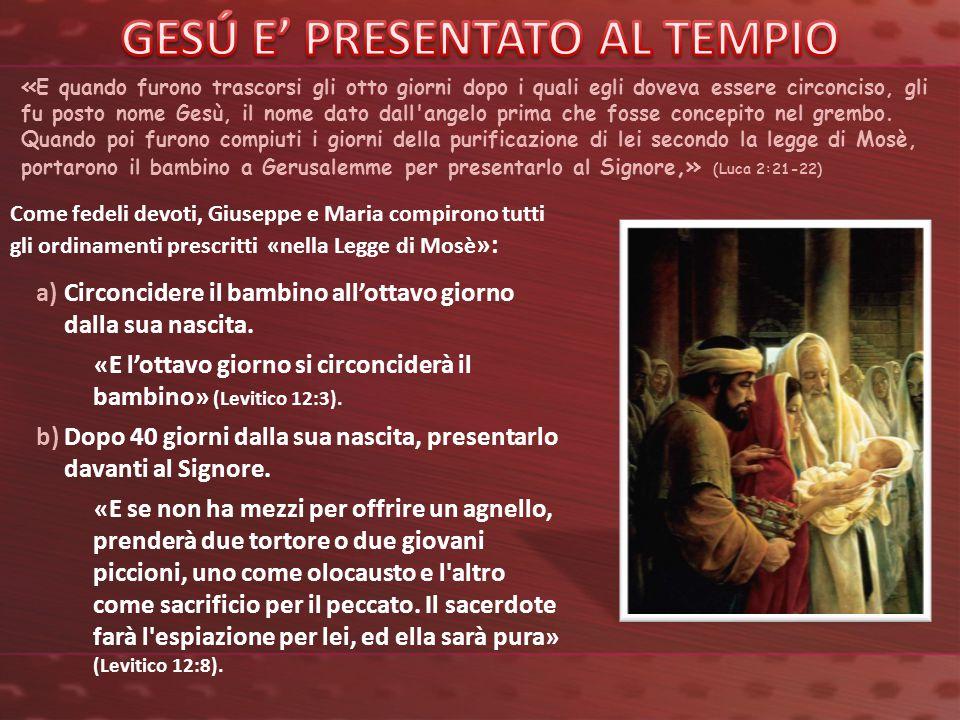 Nel tempio, Simeone prese il bambino in braccio e profettizzò su di lui.