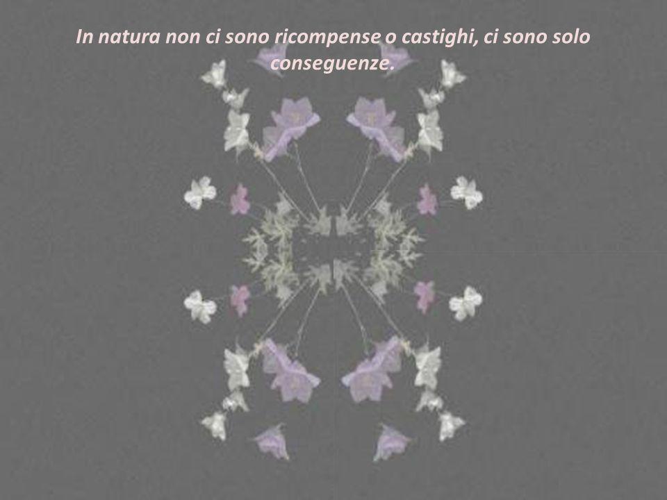 In natura non ci sono ricompense o castighi, ci sono solo conseguenze.