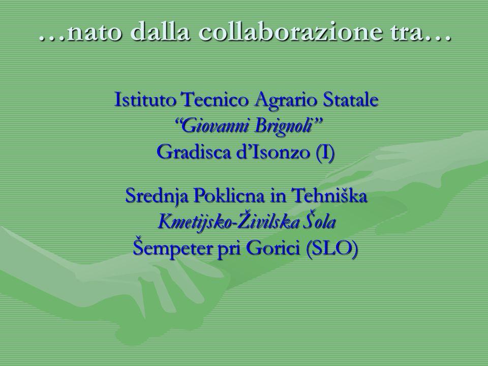 …nato dalla collaborazione tra… Istituto Tecnico Agrario Statale Giovanni Brignoli Gradisca d'Isonzo (I) Srednja Poklicna in Tehniška Kmetijsko-Živilska Šola Šempeter pri Gorici (SLO)