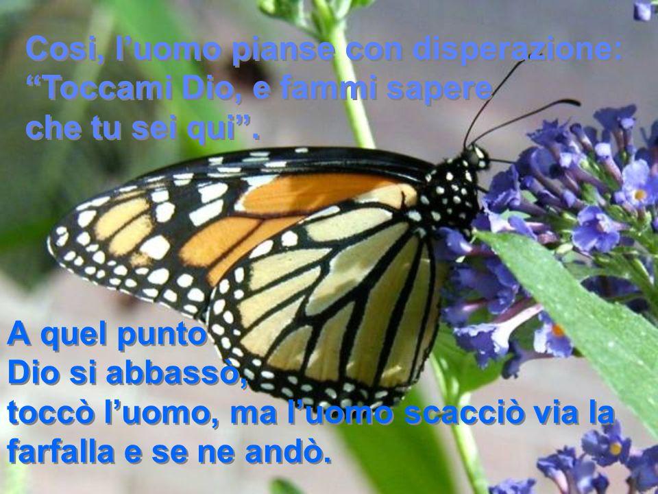 A quel punto Dio si abbassò, toccò l'uomo, ma l'uomo scacciò via la farfalla e se ne andò.