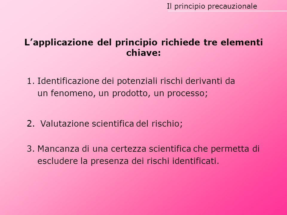 Il principio precauzionale L'applicazione del principio richiede tre elementi chiave: 1.Identificazione dei potenziali rischi derivanti da un fenomeno