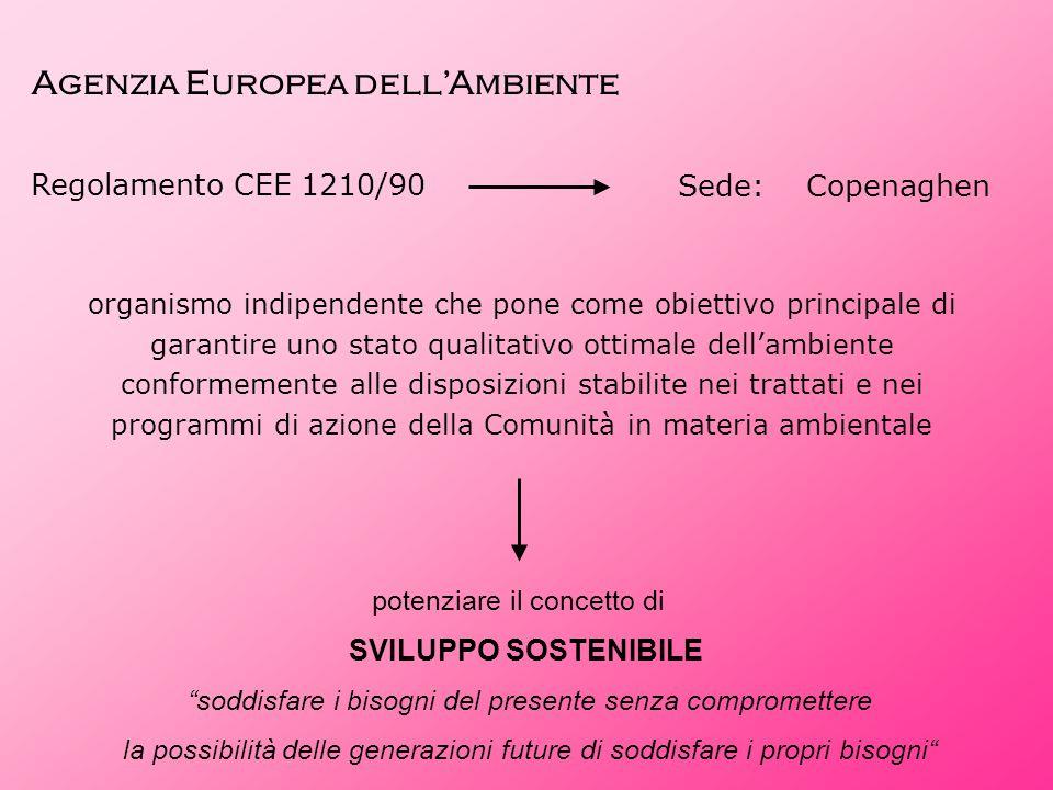 Agenzia Europea dell'Ambiente Regolamento CEE 1210/90 Sede: Copenaghen organismo indipendente che pone come obiettivo principale di garantire uno stat