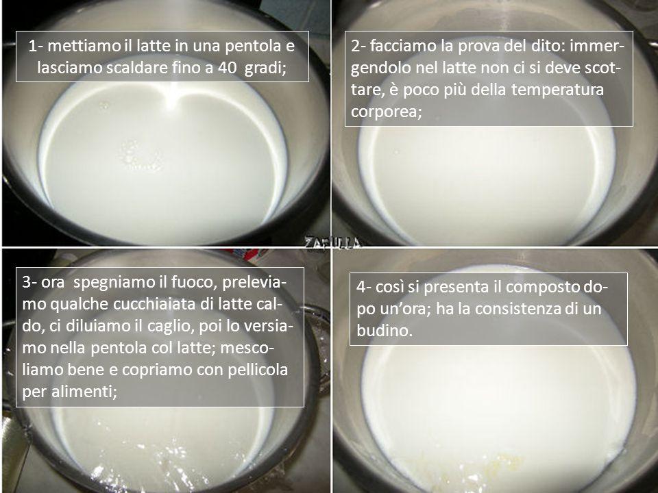 Ingredienti: 1 litro e mezzo di latte fresco, intero, pastorizzato; 1 cucchiaino scarso (da caffè) di caglio animale (da un casaro), o chimico (in farmacia);