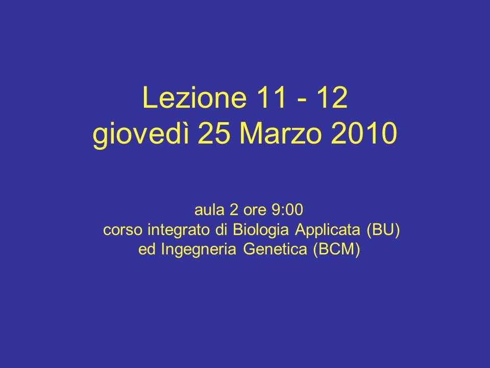 Lezione 11 - 12 giovedì 25 Marzo 2010 aula 2 ore 9:00 corso integrato di Biologia Applicata (BU) ed Ingegneria Genetica (BCM)