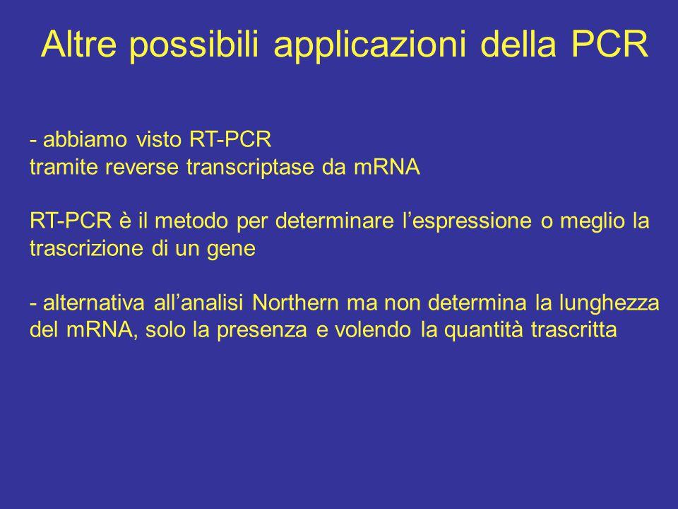 Altre possibili applicazioni della PCR - abbiamo visto RT-PCR tramite reverse transcriptase da mRNA RT-PCR è il metodo per determinare l'espressione o