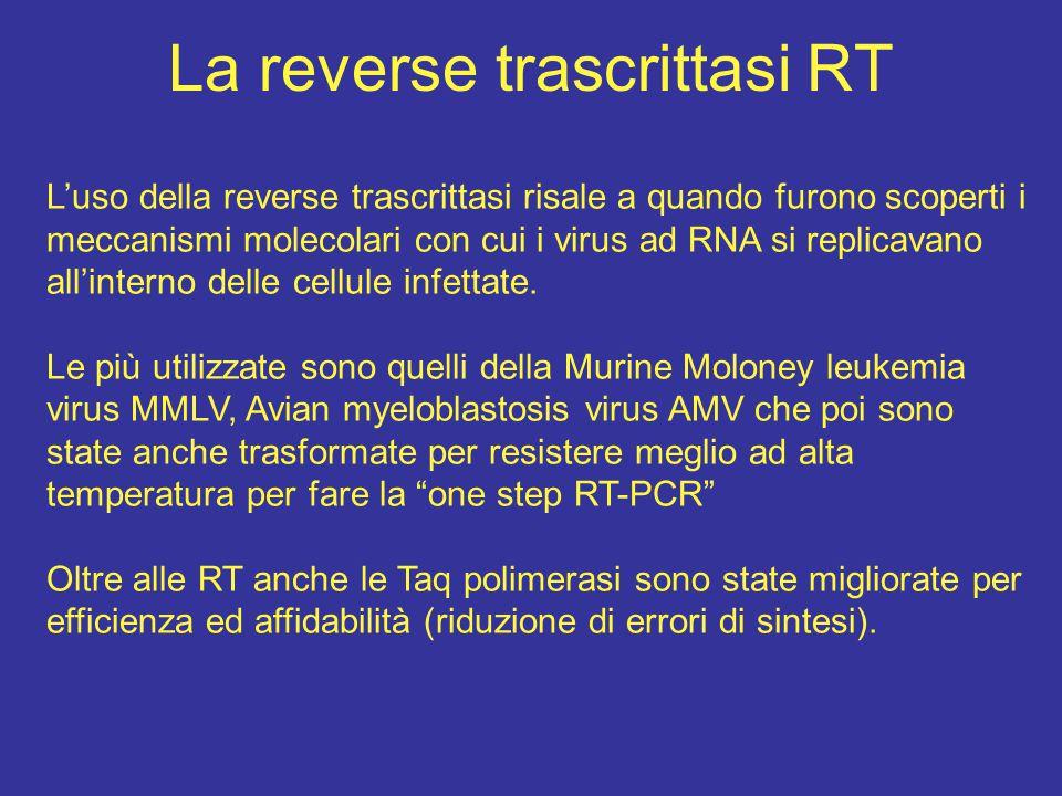 La reverse trascrittasi RT L'uso della reverse trascrittasi risale a quando furono scoperti i meccanismi molecolari con cui i virus ad RNA si replicav