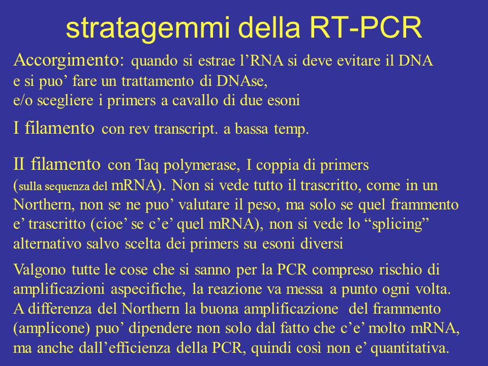 stratagemmi della RT-PCR Accorgimento: quando si estrae l'RNA si deve evitare il DNA e si puo' fare un trattamento di DNAse, e/o scegliere i primers a