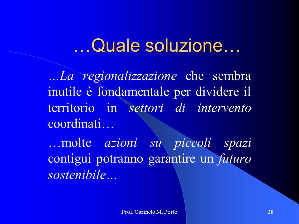 Prof. Carmelo M. Porto28 …Quale soluzione… …La regionalizzazione che sembra inutile è fondamentale per dividere il territorio in settori di intervento