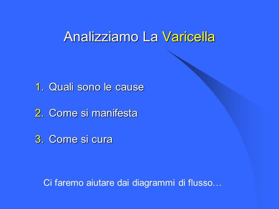 Analizziamo La Varicella 1.Quali sono le cause 2.Come si manifesta 3.Come si cura Ci faremo aiutare dai diagrammi di flusso…
