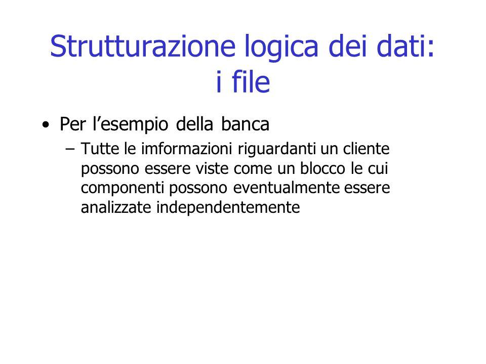 Strutturazione logica dei dati: i file Per l'esempio della banca –Tutte le imformazioni riguardanti un cliente possono essere viste come un blocco le cui componenti possono eventualmente essere analizzate independentemente