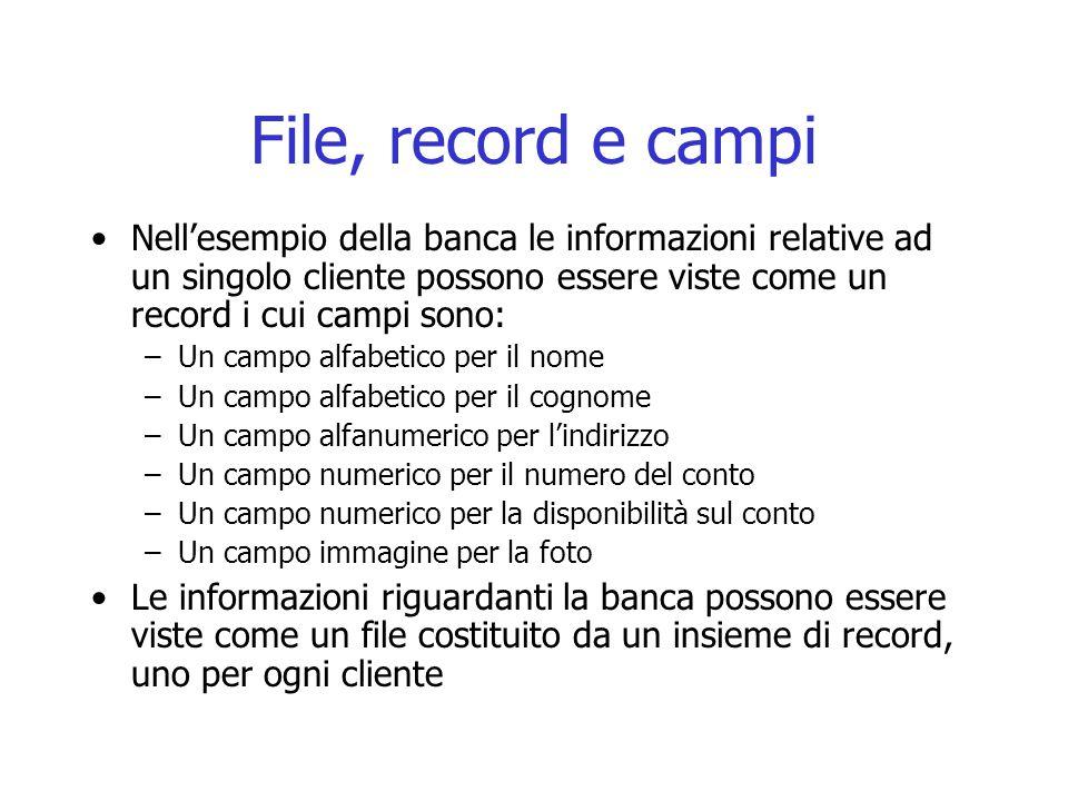 File, record e campi Nell'esempio della banca le informazioni relative ad un singolo cliente possono essere viste come un record i cui campi sono: –Un campo alfabetico per il nome –Un campo alfabetico per il cognome –Un campo alfanumerico per l'indirizzo –Un campo numerico per il numero del conto –Un campo numerico per la disponibilità sul conto –Un campo immagine per la foto Le informazioni riguardanti la banca possono essere viste come un file costituito da un insieme di record, uno per ogni cliente