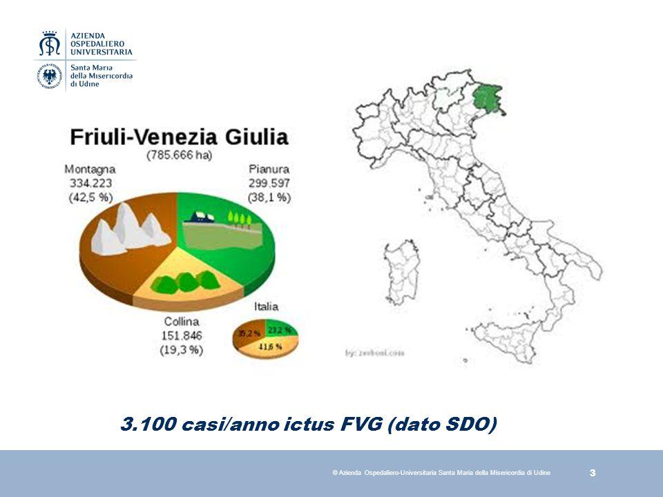 4 © Azienda Ospedaliero-Universitaria Santa Maria della Misericordia di Udine S.U.