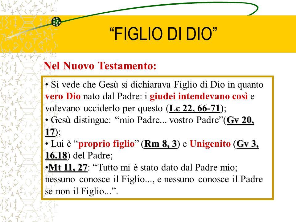 """""""FIGLIO DI DIO"""" Nel Nuovo Testamento: Si vede che Gesù si dichiarava Figlio di Dio in quanto vero Dio nato dal Padre: i giudei intendevano così e vole"""