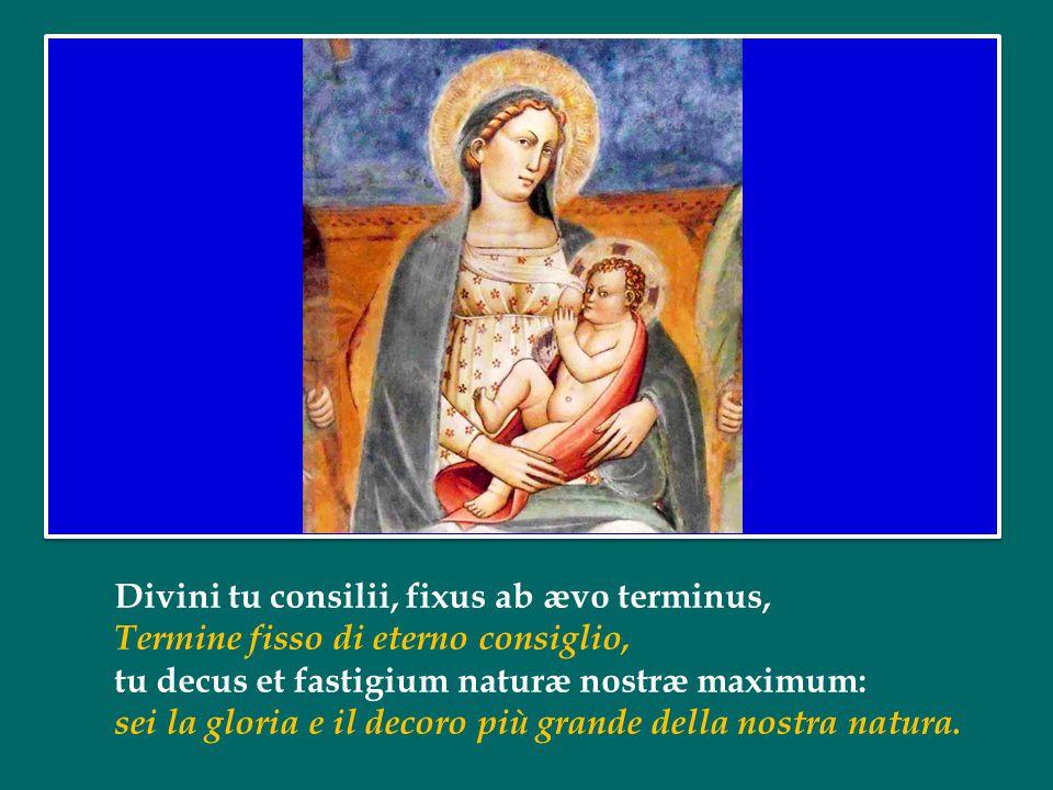 O virgo mater, filia, tui beata Filii, Vergine, madre, figlia del tuo Figlio, sublimis et humillima præ creaturis omnibus.