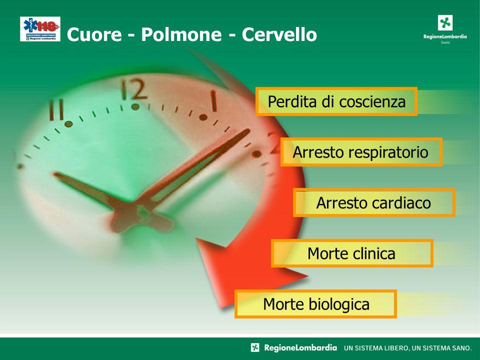 Cuore - Polmone - Cervello Perdita di coscienzaArresto respiratorioArresto cardiacoMorte clinicaMorte biologica