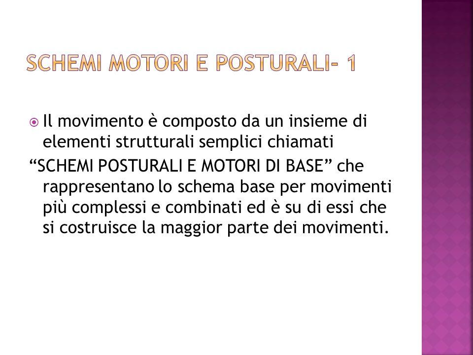  Il movimento è composto da un insieme di elementi strutturali semplici chiamati SCHEMI POSTURALI E MOTORI DI BASE che rappresentano lo schema base per movimenti più complessi e combinati ed è su di essi che si costruisce la maggior parte dei movimenti.