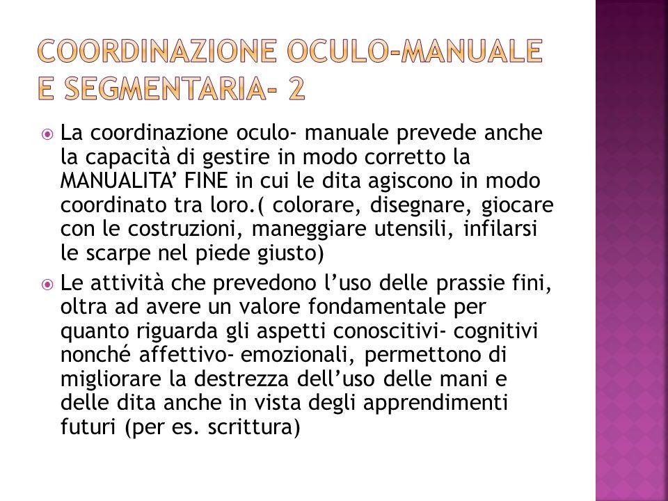  La coordinazione oculo- manuale prevede anche la capacità di gestire in modo corretto la MANUALITA' FINE in cui le dita agiscono in modo coordinato