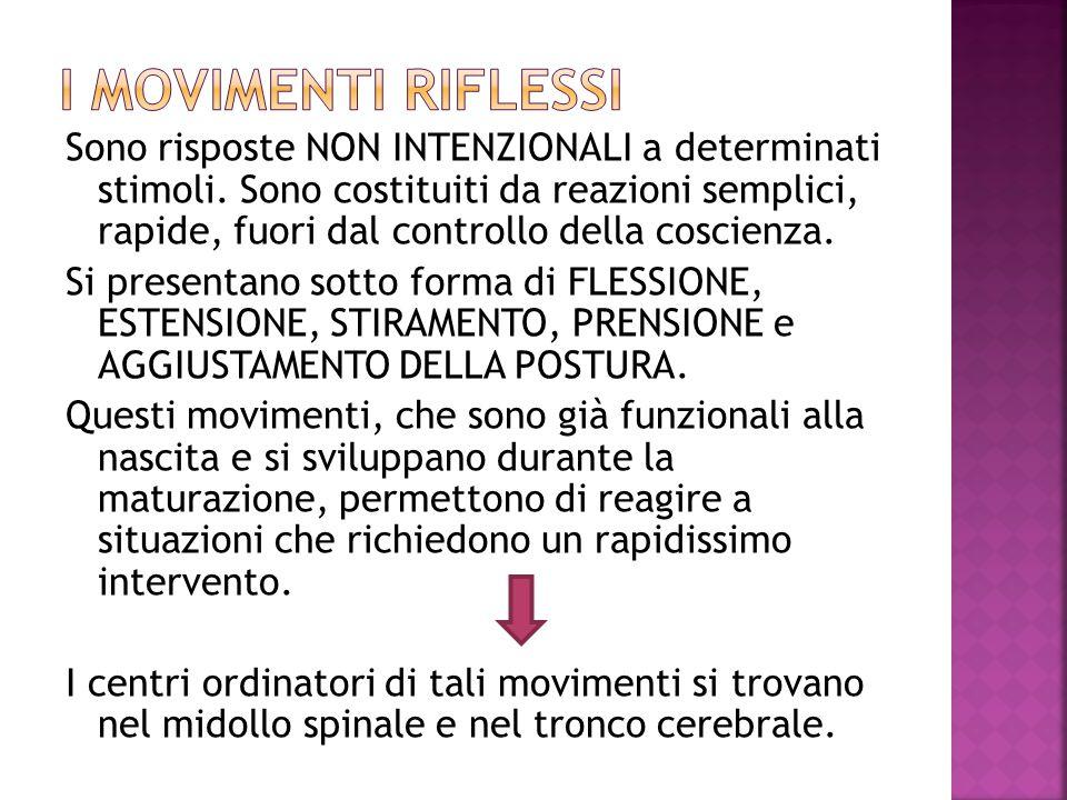 Giulia Pento (a cura di), Muoversi per…piacere, Edizioni Junior, Azzano San Paolo (BG) 2003, pp 284.