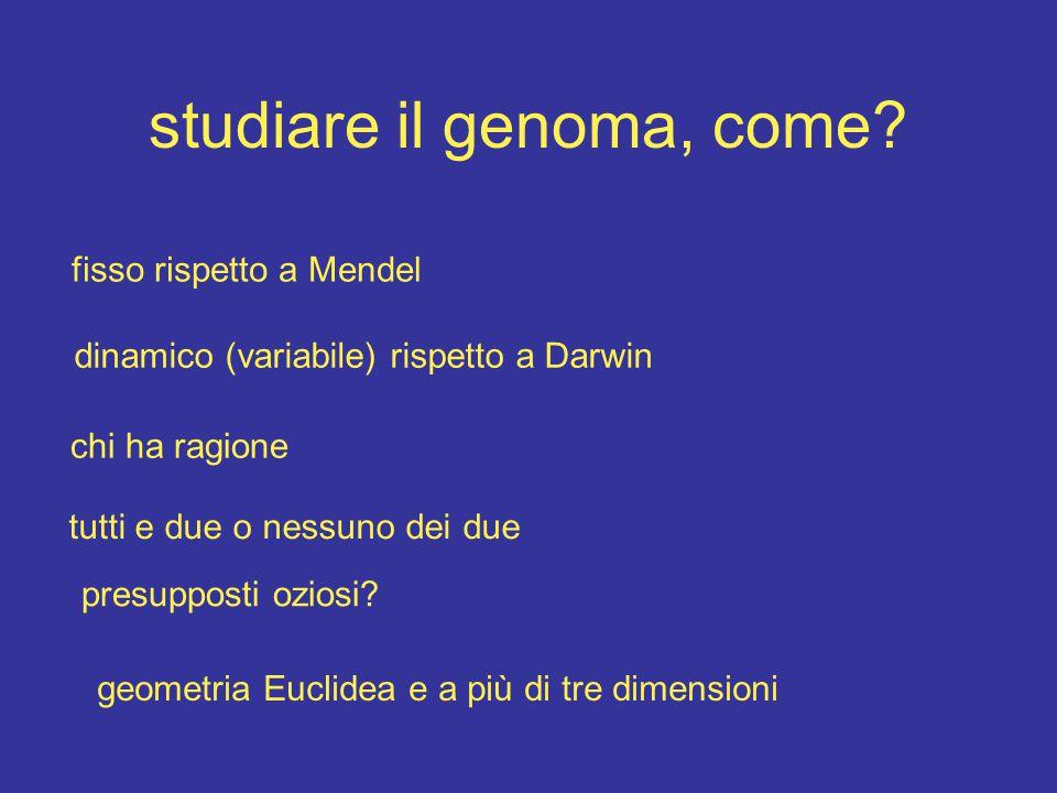 studiare il genoma, come.