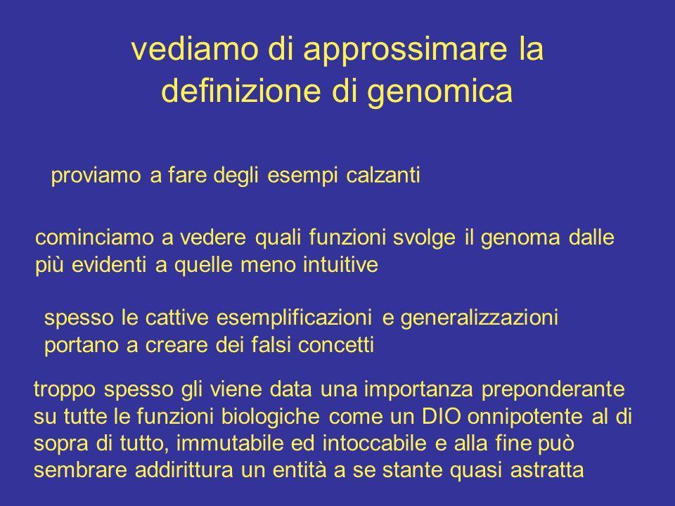 vediamo di approssimare la definizione di genomica proviamo a fare degli esempi calzanti cominciamo a vedere quali funzioni svolge il genoma dalle più evidenti a quelle meno intuitive spesso le cattive esemplificazioni e generalizzazioni portano a creare dei falsi concetti troppo spesso gli viene data una importanza preponderante su tutte le funzioni biologiche come un DIO onnipotente al di sopra di tutto, immutabile ed intoccabile e alla fine può sembrare addirittura un entità a se stante quasi astratta