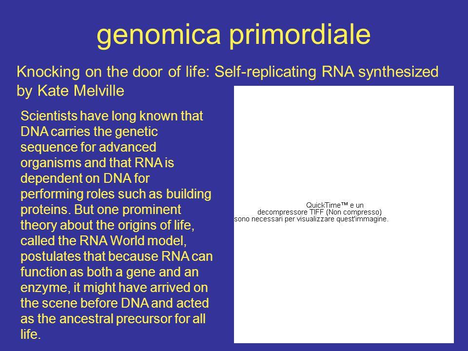 il mondo ad RNA.