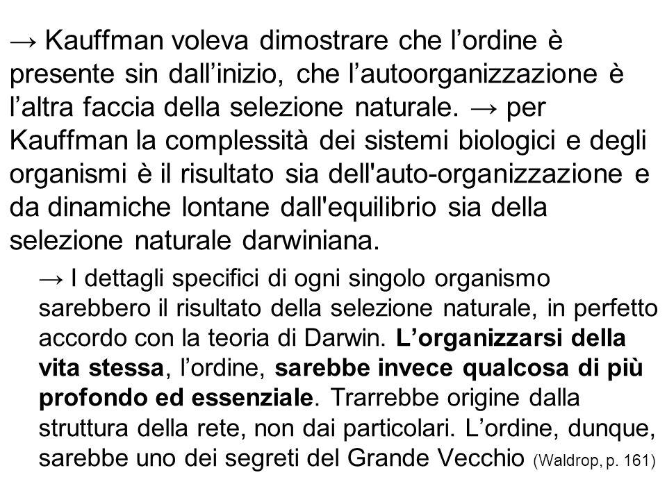 → Kauffman voleva dimostrare che l'ordine è presente sin dall'inizio, che l'autoorganizzazione è l'altra faccia della selezione naturale. → per Kauffm